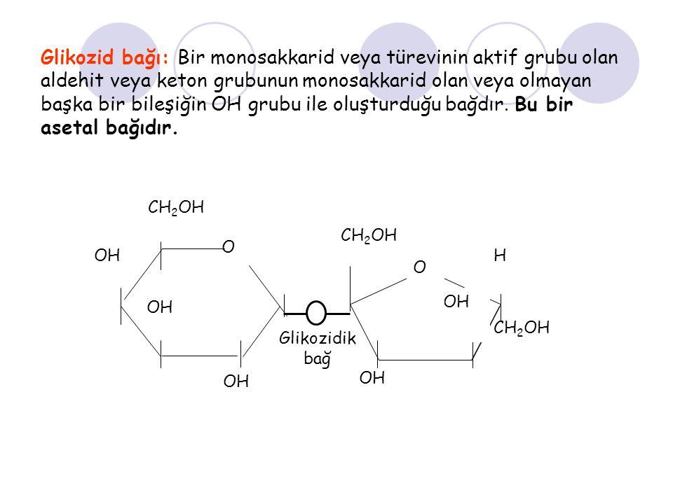 Glikozid bağı: Bir monosakkarid veya türevinin aktif grubu olan aldehit veya keton grubunun monosakkarid olan veya olmayan başka bir bileşiğin OH grubu ile oluşturduğu bağdır. Bu bir asetal bağıdır.