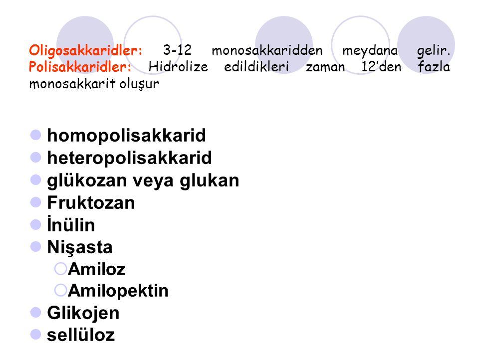 homopolisakkarid heteropolisakkarid glükozan veya glukan Fruktozan