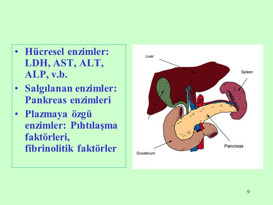 Hücresel enzimler: LDH, AST, ALT, ALP, v.b.
