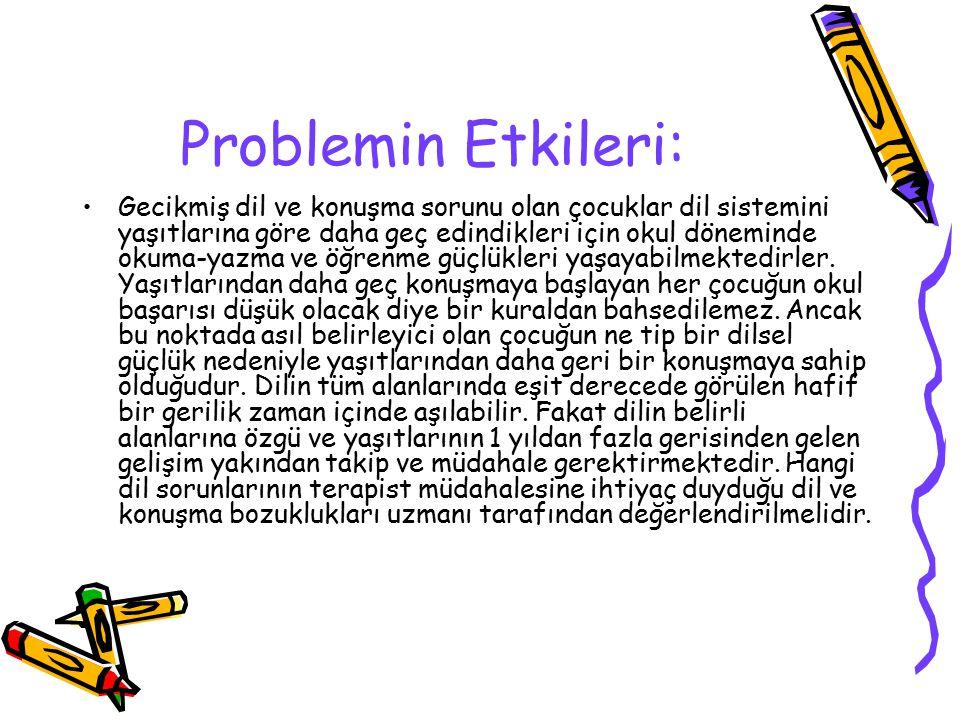 Problemin Etkileri: