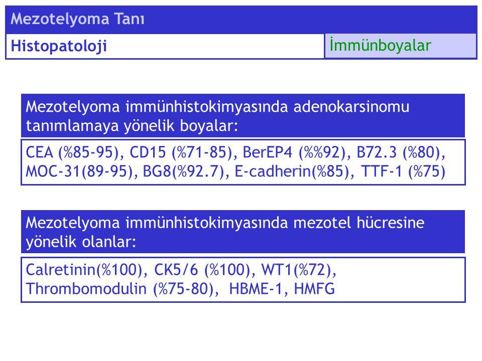 Mezotelyoma Tanı Histopatoloji. İmmünboyalar. Mezotelyoma immünhistokimyasında adenokarsinomu tanımlamaya yönelik boyalar: