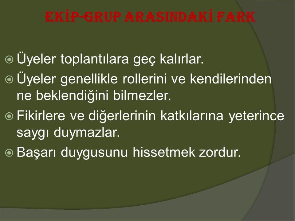 EKİP-GRUP ARASINDAKİ FARK