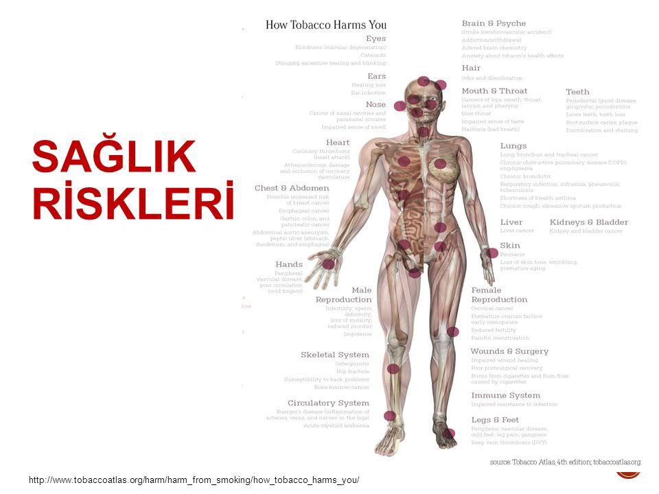SAĞLIK RİSKLERİ http://www.tobaccoatlas.org/harm/harm_from_smoking/how_tobacco_harms_you/