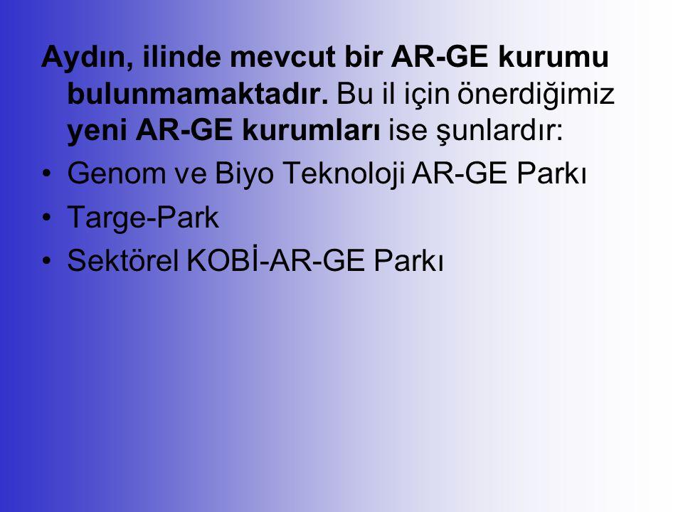 Aydın, ilinde mevcut bir AR-GE kurumu bulunmamaktadır