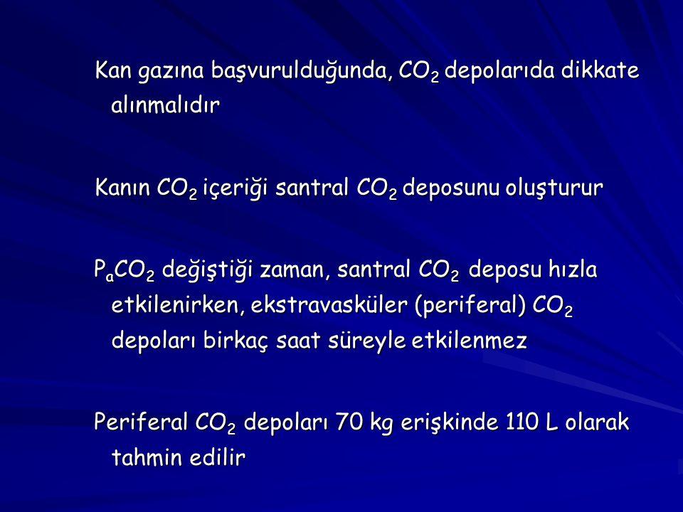 Kan gazına başvurulduğunda, CO2 depolarıda dikkate alınmalıdır