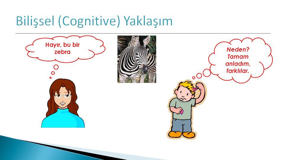 Bilişsel (Cognitive) Yaklaşım
