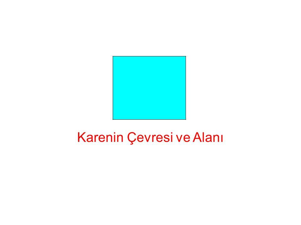 Karenin Çevresi ve Alanı