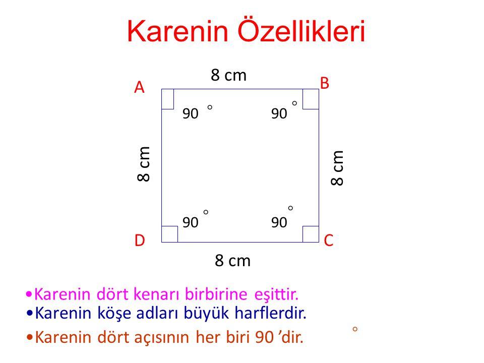 Karenin Özellikleri 8 cm B A ◦ ◦ 8 cm 8 cm ◦ ◦ D C 8 cm