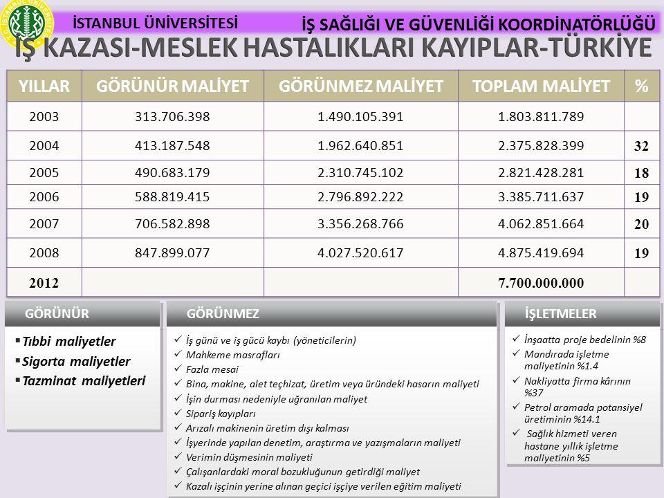 İŞ KAZASI-MESLEK HASTALIKLARI KAYIPLAR-TÜRKİYE