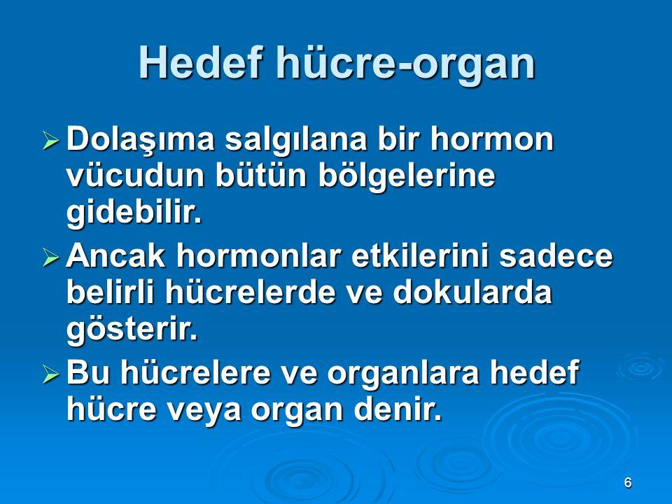 Hedef hücre-organ Dolaşıma salgılana bir hormon vücudun bütün bölgelerine gidebilir.