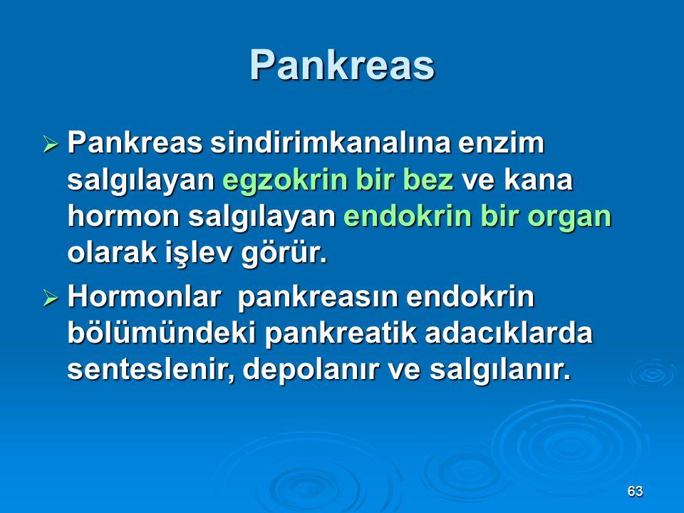 Pankreas Pankreas sindirimkanalına enzim salgılayan egzokrin bir bez ve kana hormon salgılayan endokrin bir organ olarak işlev görür.