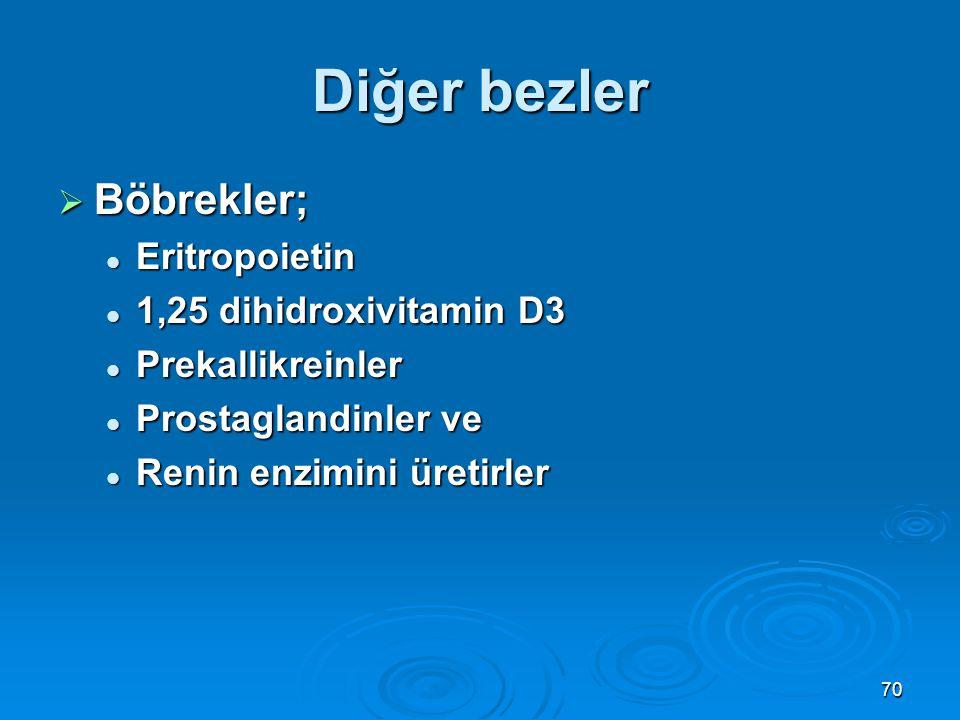 Diğer bezler Böbrekler; Eritropoietin 1,25 dihidroxivitamin D3