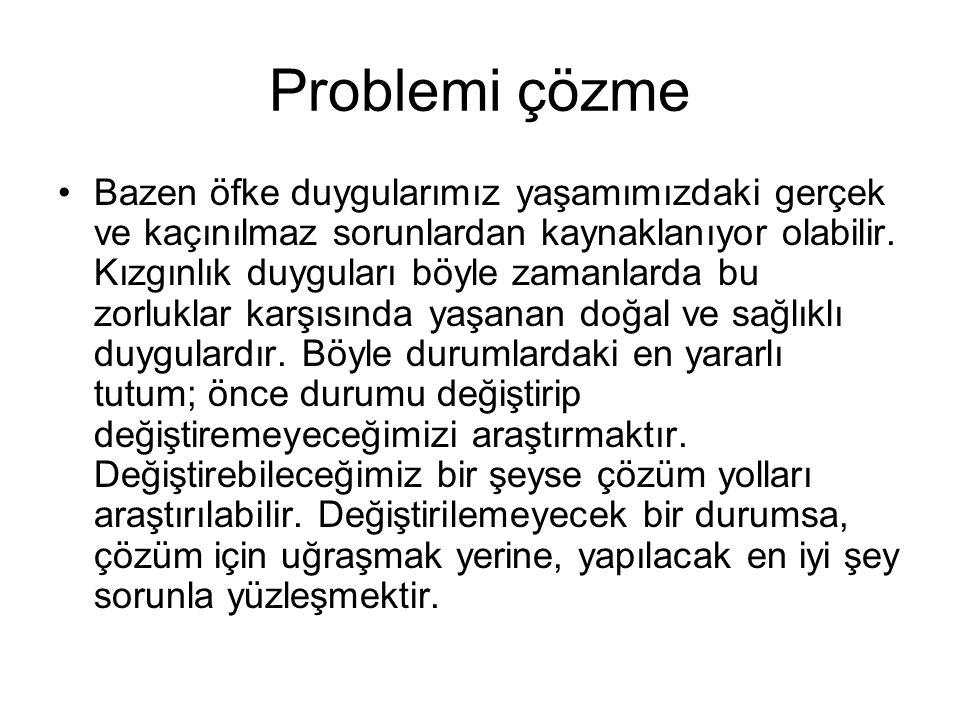 Problemi çözme