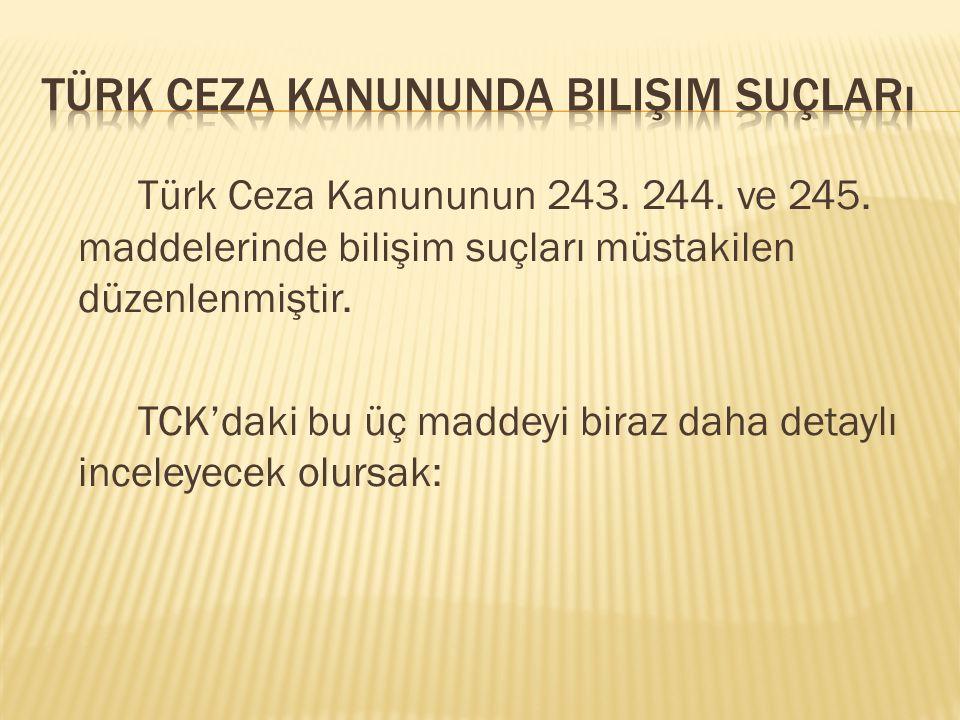 Türk Ceza Kanununda Bilişim Suçları
