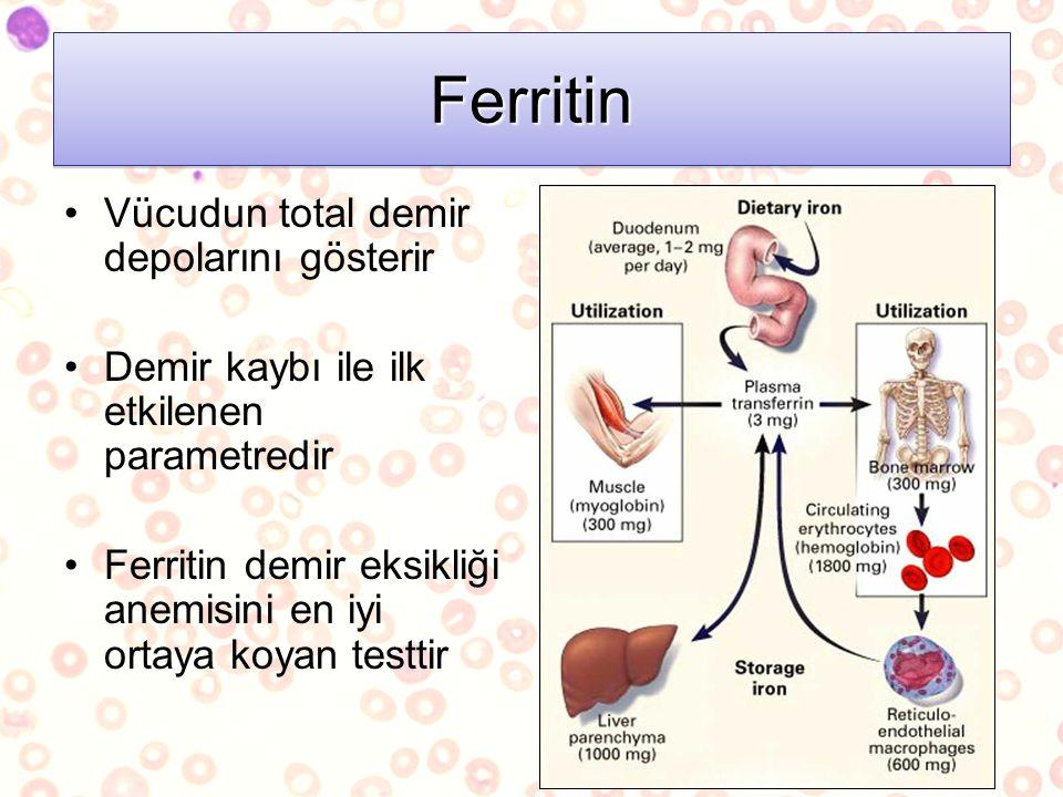 Ferritin Vücudun total demir depolarını gösterir