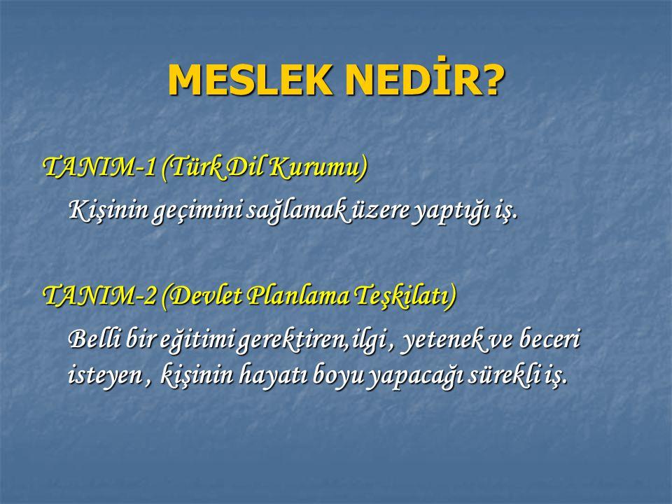 MESLEK NEDİR TANIM-1 (Türk Dil Kurumu)