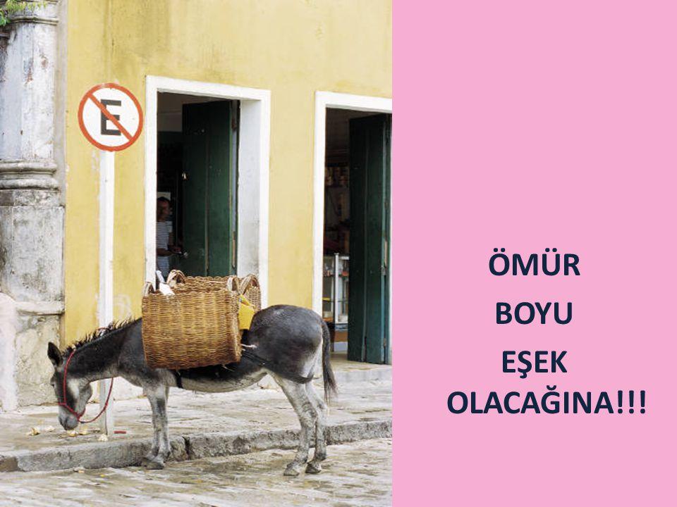 ÖMÜR BOYU EŞEK OLACAĞINA!!!