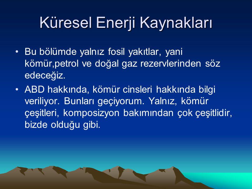 Küresel Enerji Kaynakları