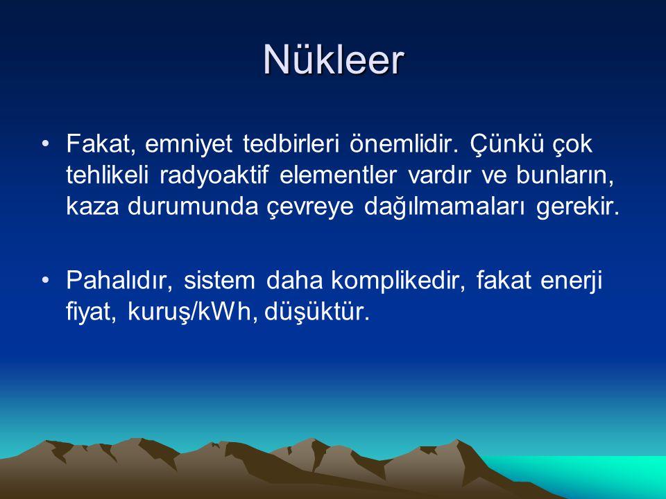 Nükleer
