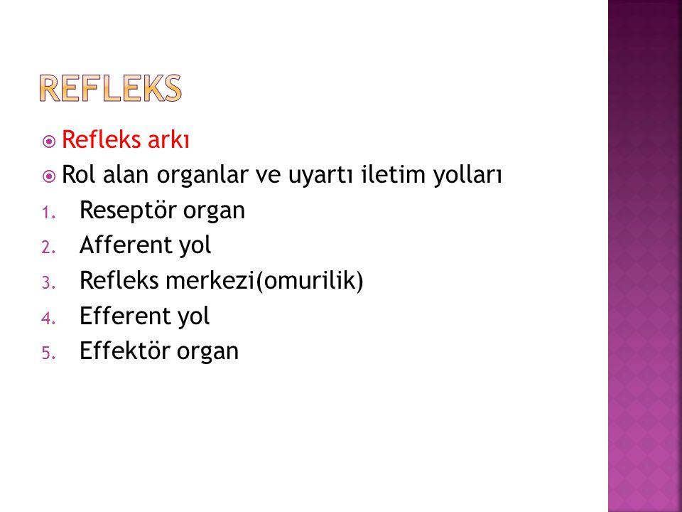 refleks Refleks arkı Rol alan organlar ve uyartı iletim yolları