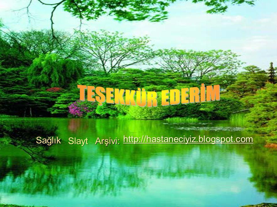 TEŞEKKÜR EDERİM Sağlık http://hastaneciyiz.blogspot.com Slayt Arşivi: