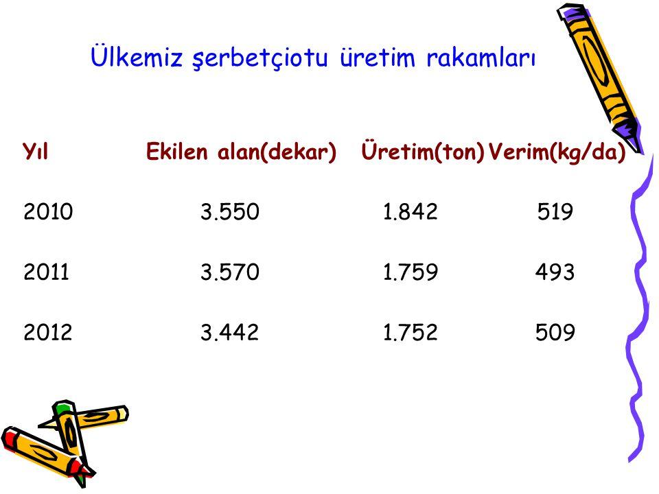 Ülkemiz şerbetçiotu üretim rakamları
