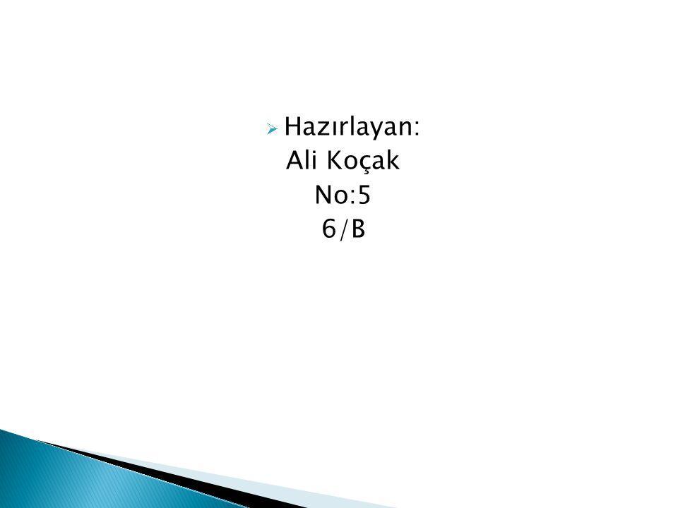 Hazırlayan: Ali Koçak No:5 6/B