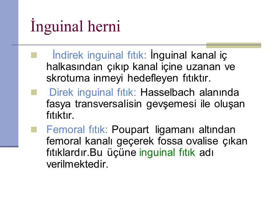 İnguinal herni İndirek inguinal fıtık: İnguinal kanal iç halkasından çıkıp kanal içine uzanan ve skrotuma inmeyi hedefleyen fıtıktır.