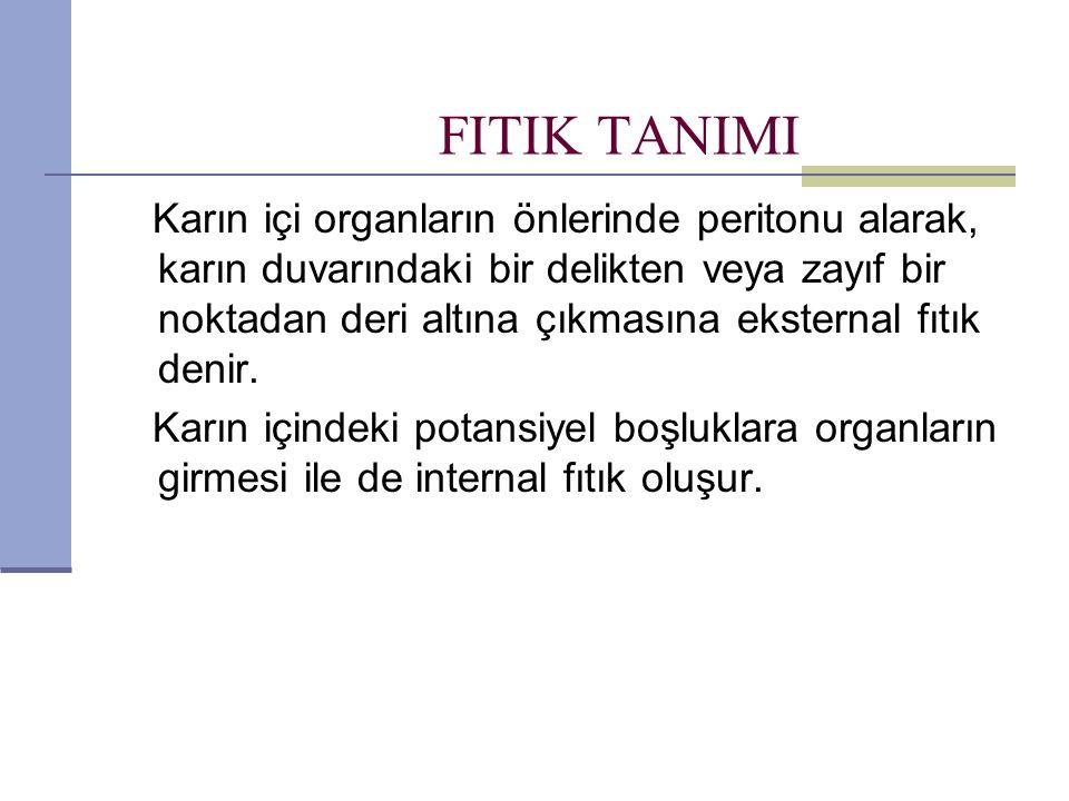 FITIK TANIMI