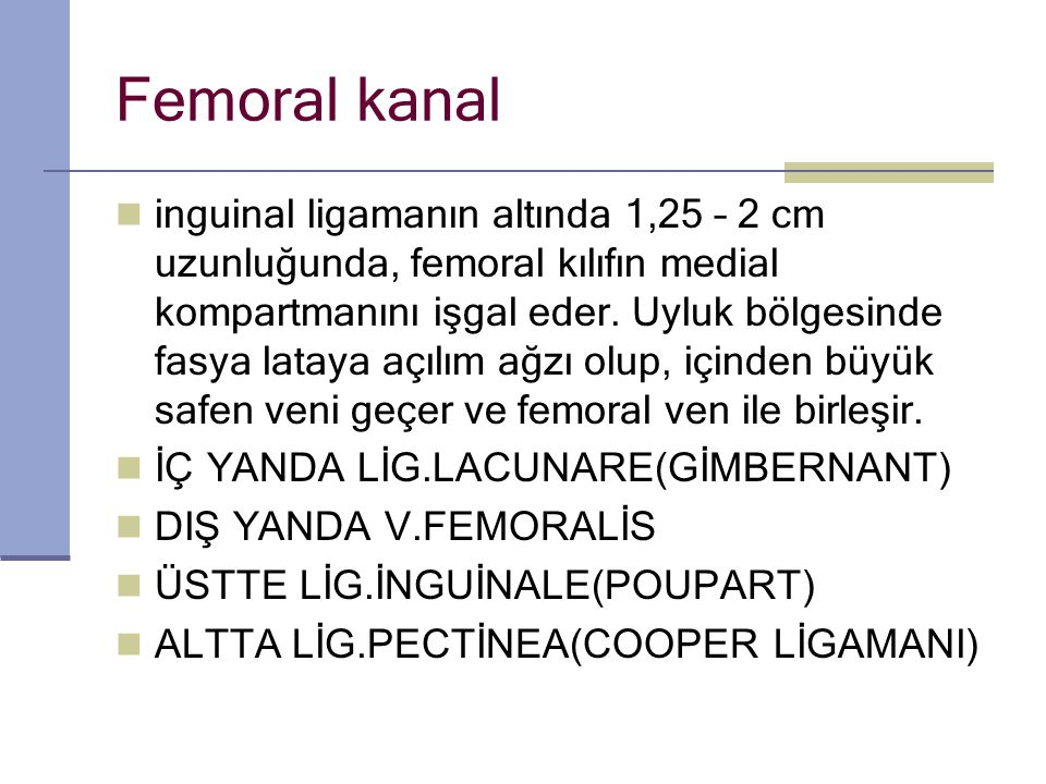 Femoral kanal