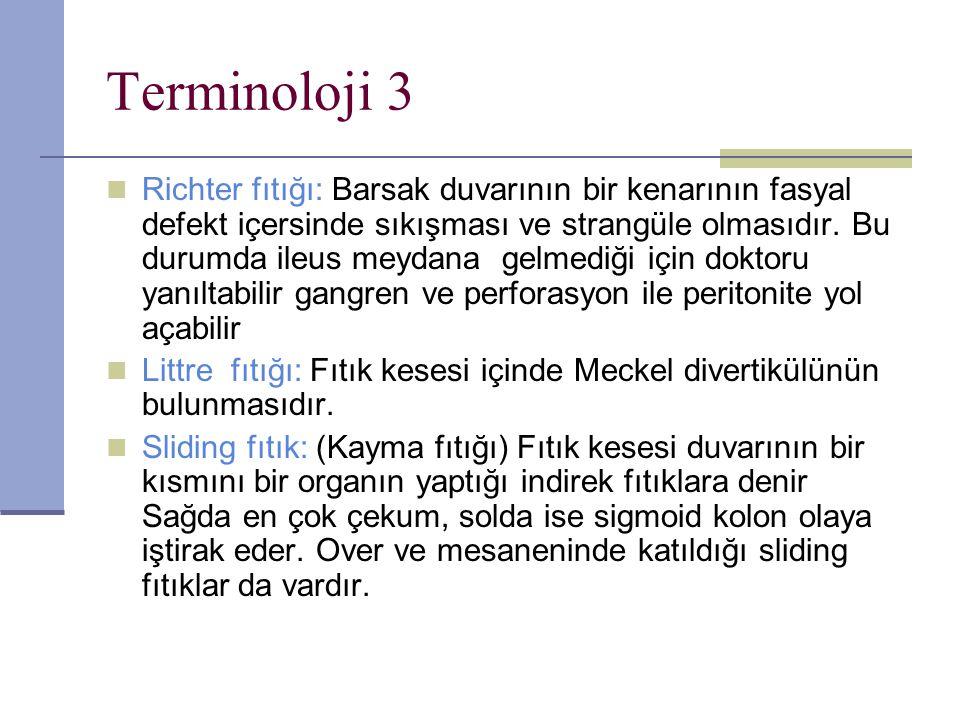 Terminoloji 3