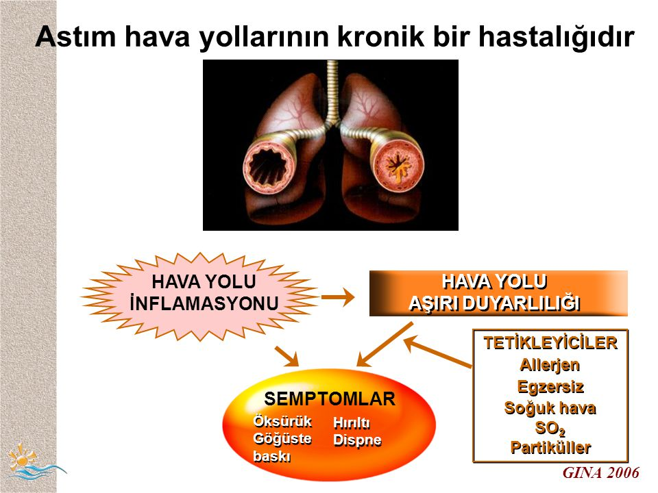 Astım hava yollarının kronik bir hastalığıdır