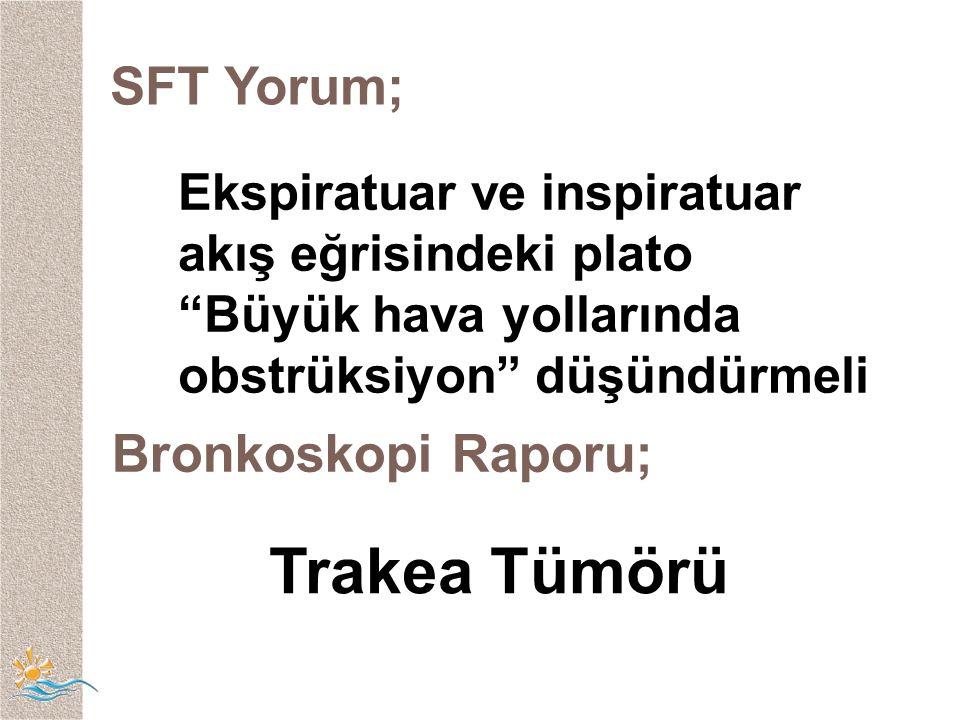 Trakea Tümörü SFT Yorum; Bronkoskopi Raporu;