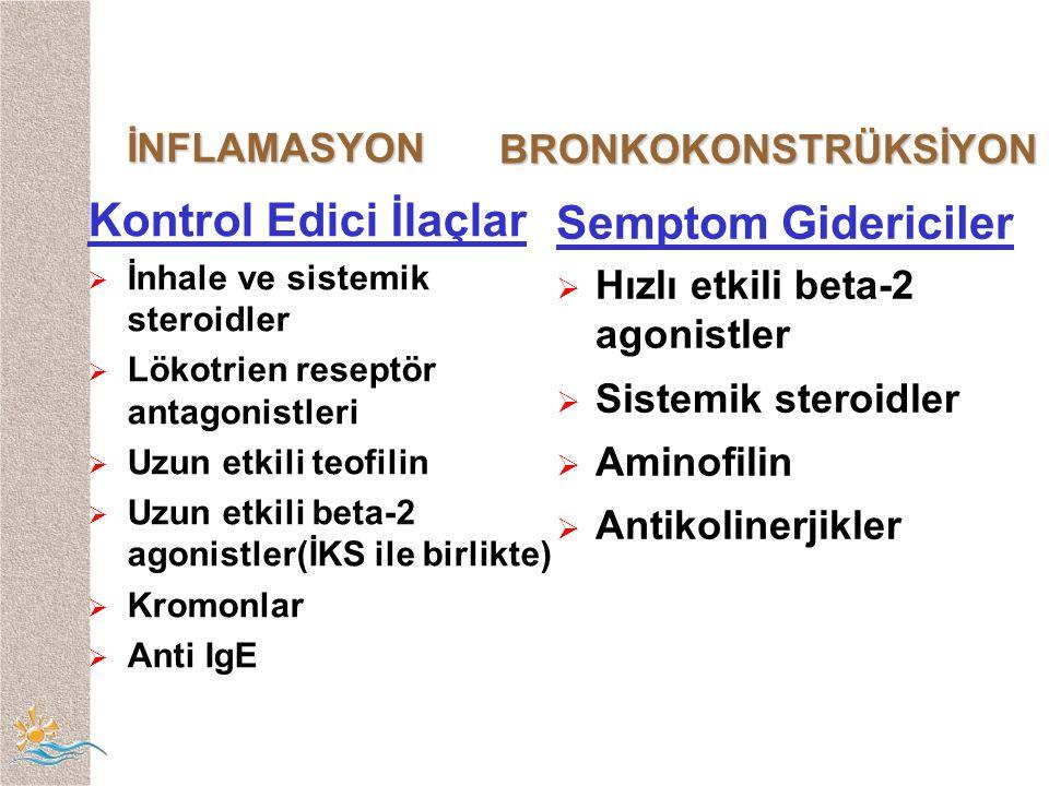 Kontrol Edici İlaçlar Semptom Gidericiler İNFLAMASYON