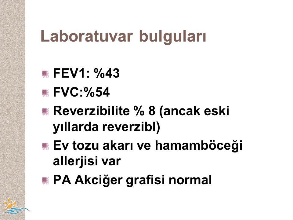 Laboratuvar bulguları