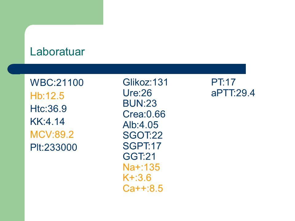 Laboratuar WBC:21100 Glikoz:131 PT:17 Hb:12.5 Ure:26 aPTT:29.4 BUN:23