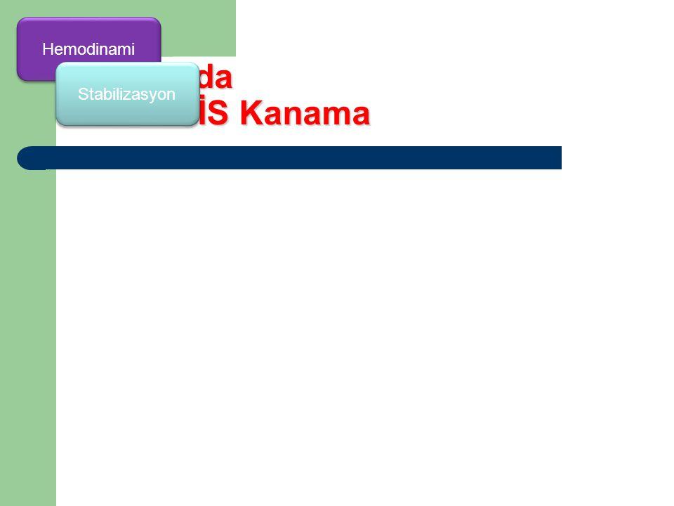Hemodinami 10 adımda GİS Kanama Stabilizasyon