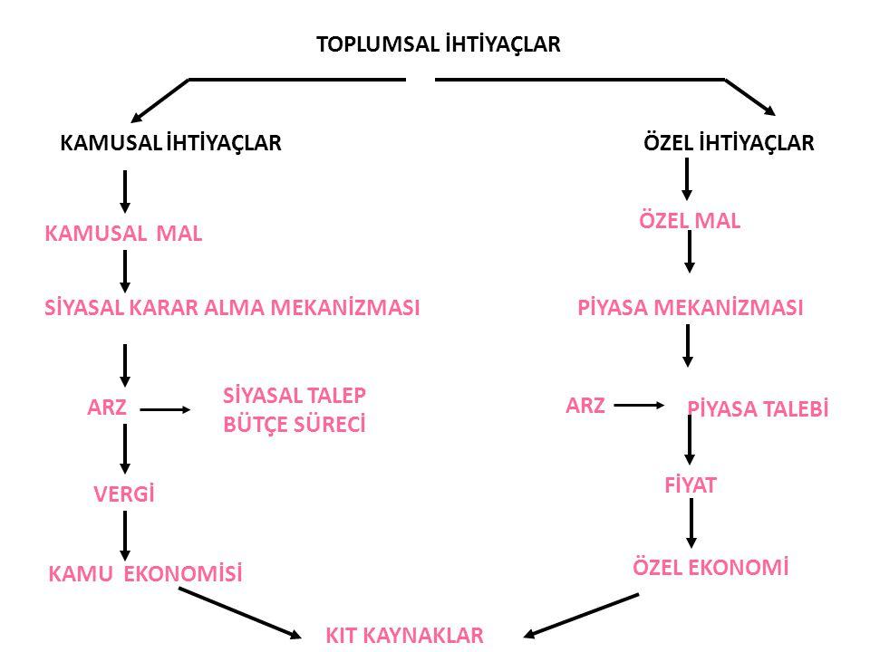 SİYASAL KARAR ALMA MEKANİZMASI