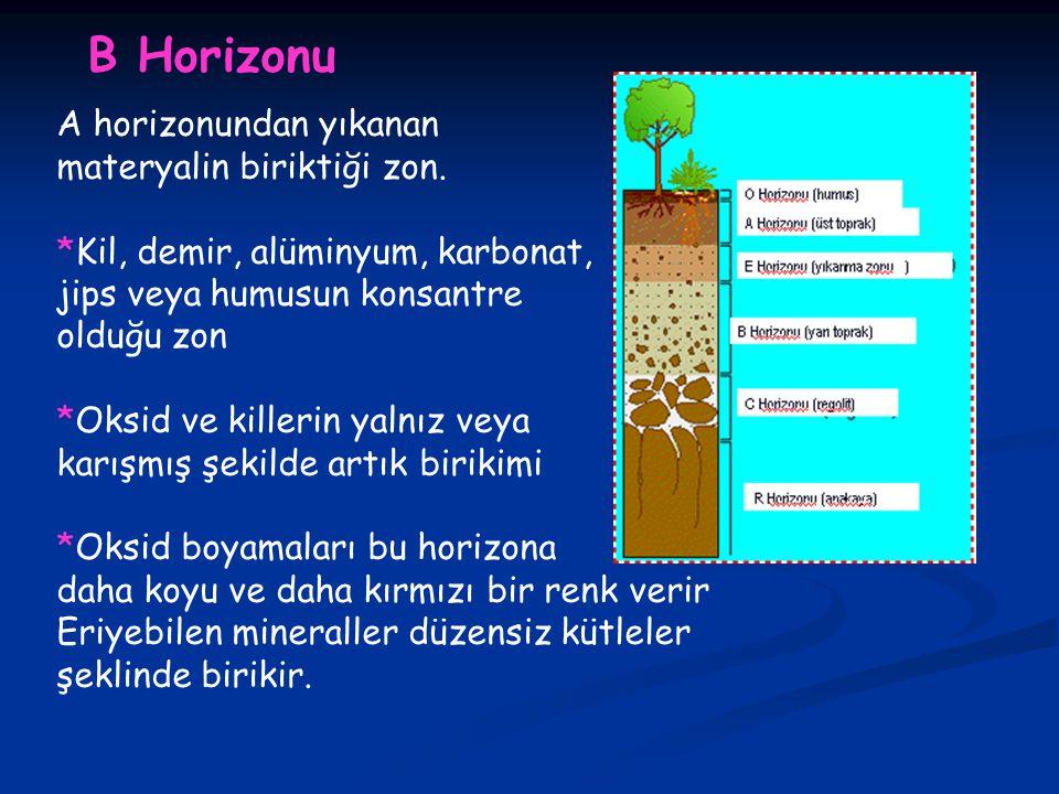 B Horizonu A horizonundan yıkanan materyalin biriktiği zon.