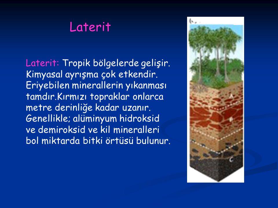 Laterit Laterit: Tropik bölgelerde gelişir.
