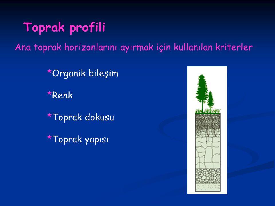 Toprak profili Ana toprak horizonlarını ayırmak için kullanılan kriterler. *Organik bileşim. *Renk.