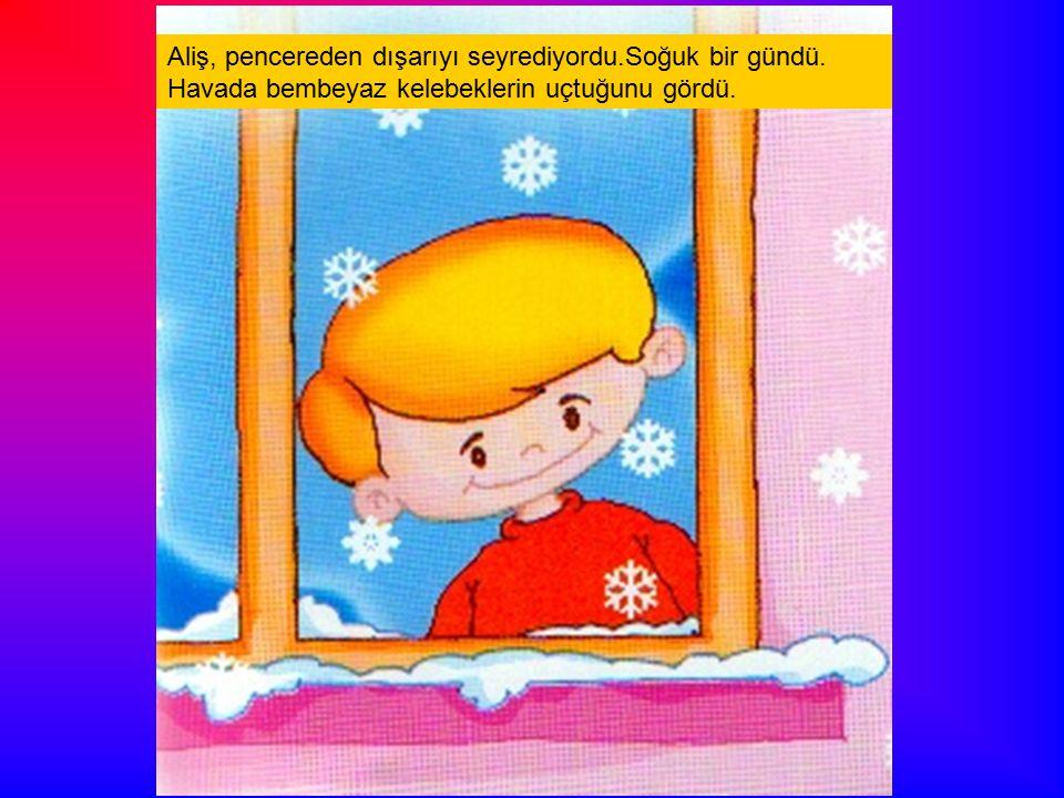 Aliş, pencereden dışarıyı seyrediyordu. Soğuk bir gündü