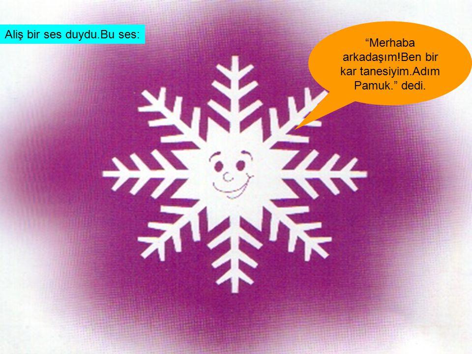 Merhaba arkadaşım!Ben bir kar tanesiyim.Adım Pamuk. dedi.