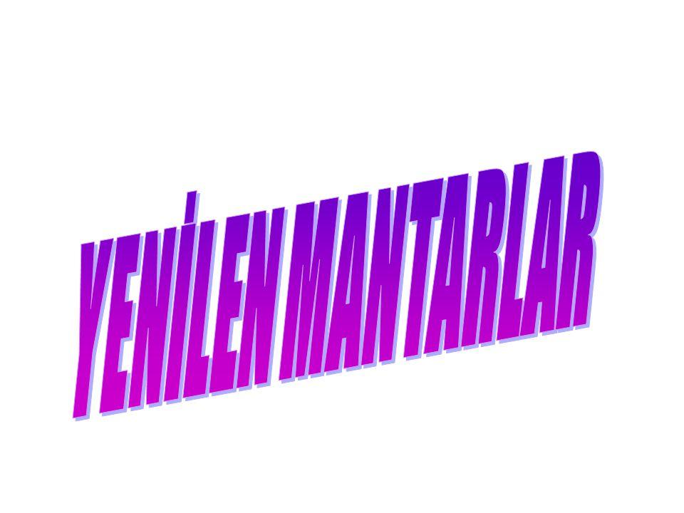 YENİLEN MANTARLAR