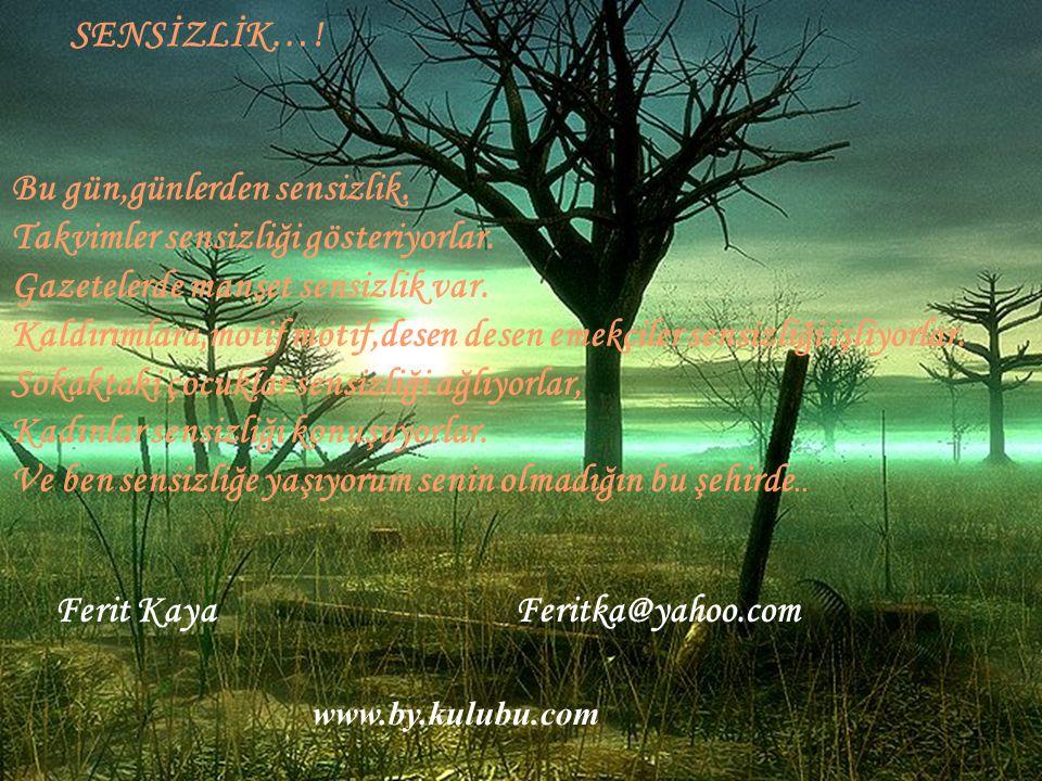 Ferit Kaya Feritka@yahoo.com