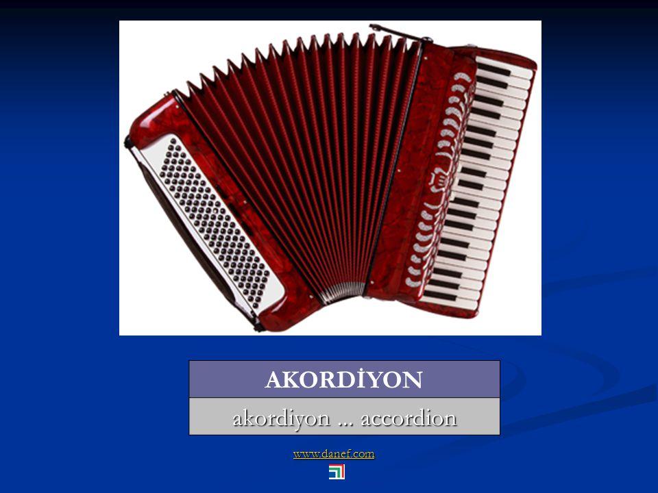 AKORDİYON akordiyon ... accordion www.danef.com