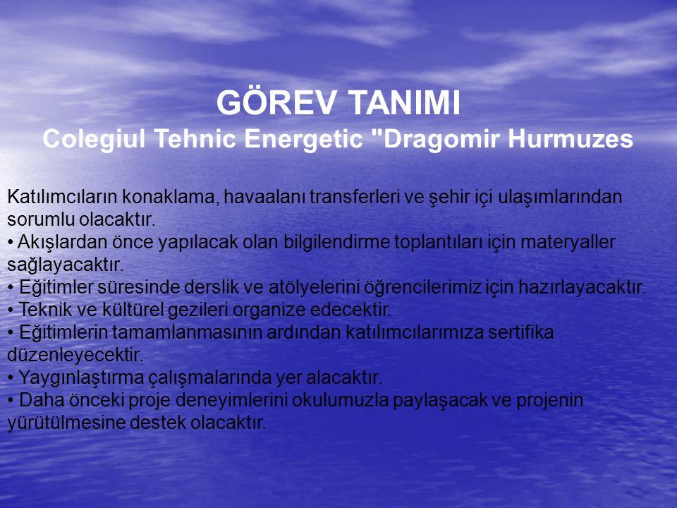 Colegiul Tehnic Energetic Dragomir Hurmuzes