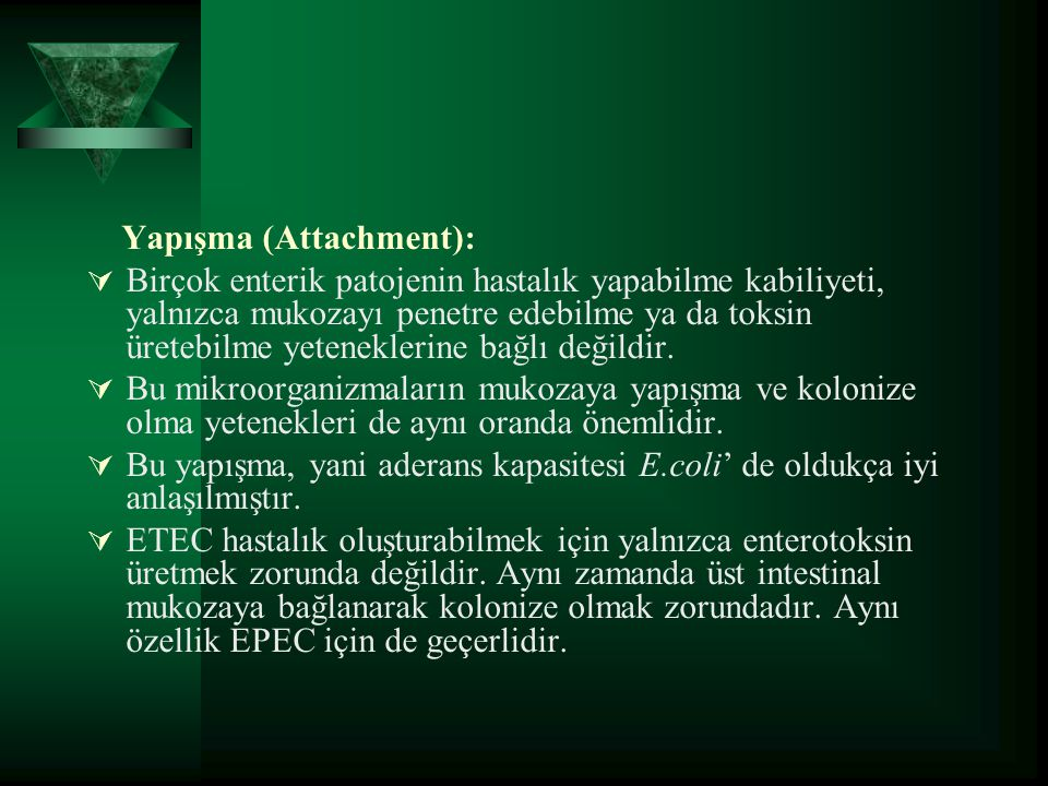 Yapışma (Attachment):