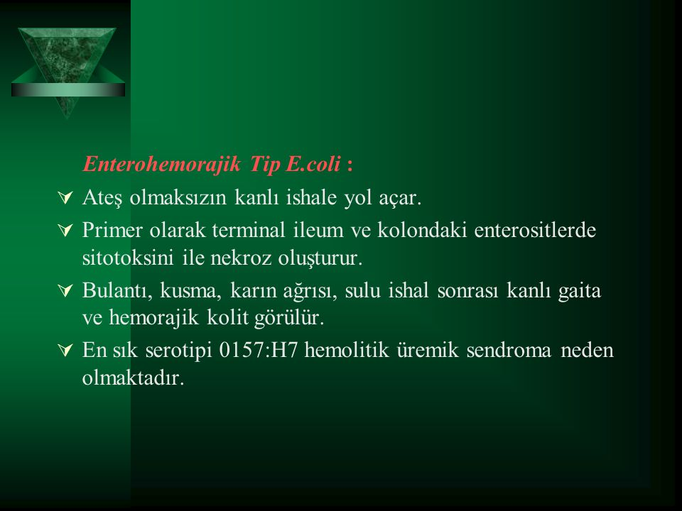 Enterohemorajik Tip E.coli :