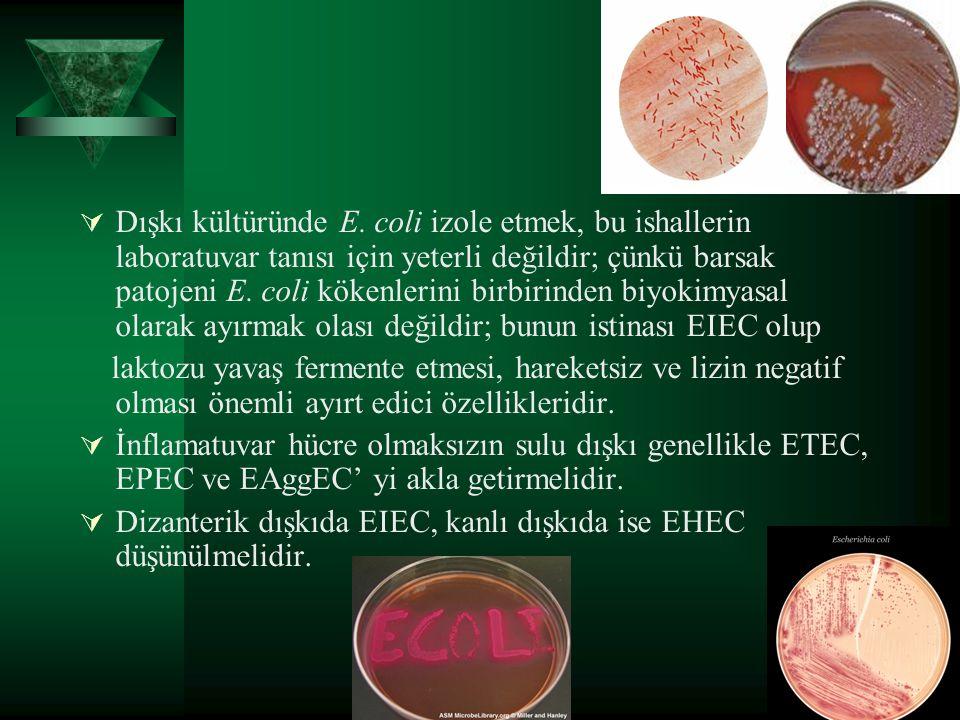 Dışkı kültüründe E. coli izole etmek, bu ishallerin laboratuvar tanısı için yeterli değildir; çünkü barsak patojeni E. coli kökenlerini birbirinden biyokimyasal olarak ayırmak olası değildir; bunun istinası EIEC olup